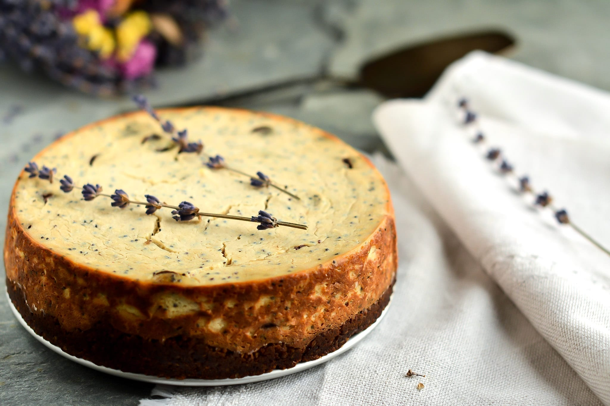 cheesecake-baked-tofu-chocolate-poppy-seeds