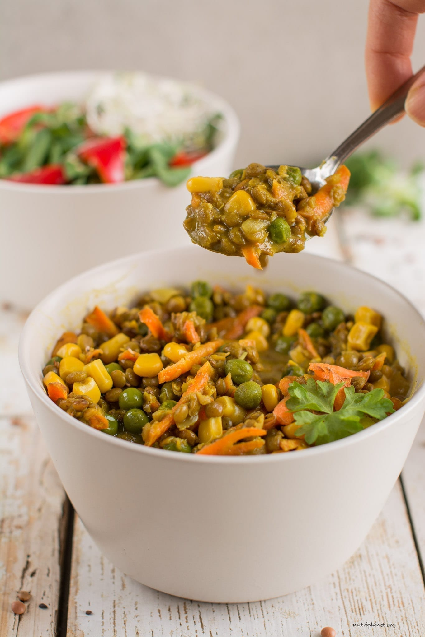 Vegan Stew with Brown Lentils, Green Peas and Corn